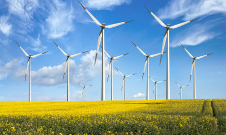Vietnam : Lancement officiel du parc éolien de 800 Megawatt de Phu Cuong