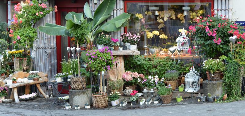 Chambre froide pour fleuriste